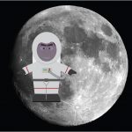 Tax Man in Space